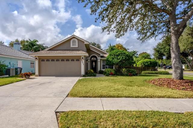 1211 Woodcrest Avenue, Safety Harbor, FL 34695 (MLS #T3214340) :: Lock & Key Realty