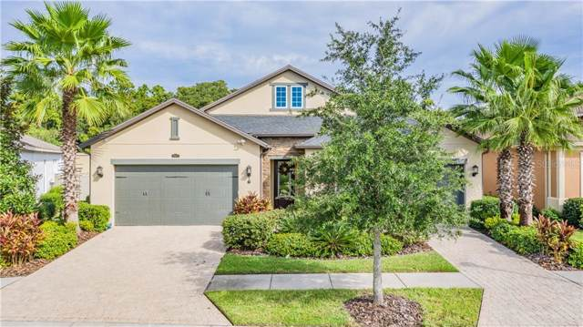 2631 Milford Berry Lane, Tampa, FL 33618 (MLS #T3214347) :: Medway Realty