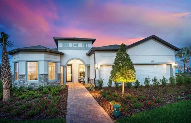 4840 Maritime Waters Court, Land O Lakes, FL 34638 (MLS #T3214359) :: Team Bohannon Keller Williams, Tampa Properties