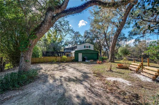 32348 Marchmont Circle, Dade City, FL 33523 (MLS #T3214374) :: Cartwright Realty
