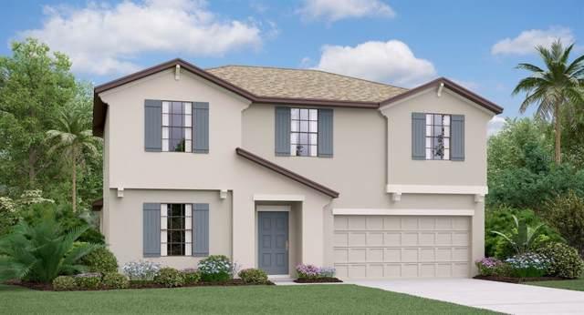 13222 Wildflower Meadow Drive, Riverview, FL 33579 (MLS #T3214378) :: Delgado Home Team at Keller Williams