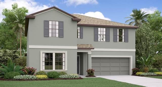 13236 Wildflower Meadow Drive, Riverview, FL 33579 (MLS #T3214383) :: Delgado Home Team at Keller Williams