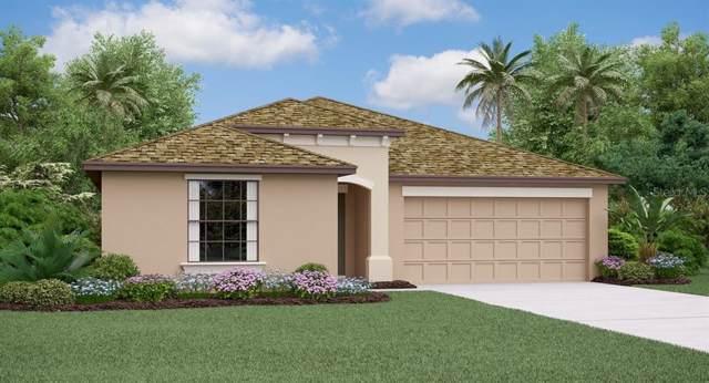 13220 Wildflower Meadow Drive, Riverview, FL 33579 (MLS #T3214385) :: Delgado Home Team at Keller Williams