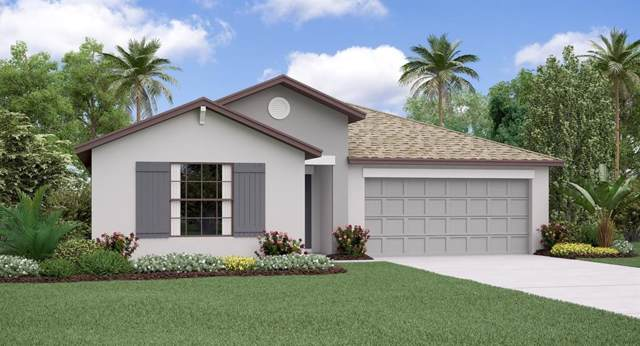 13230 Wildflower Meadow Drive, Riverview, FL 33579 (MLS #T3214388) :: Delgado Home Team at Keller Williams