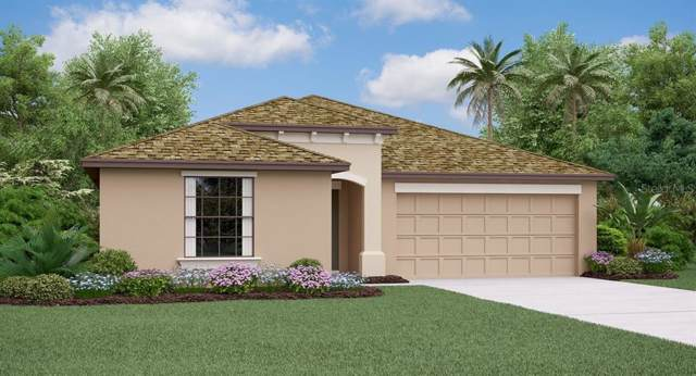 13234 Wildflower Meadow Drive, Riverview, FL 33579 (MLS #T3214392) :: Delgado Home Team at Keller Williams