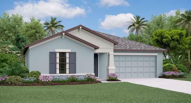 13226 Wildflower Meadow Drive, Riverview, FL 33579 (MLS #T3214396) :: Delgado Home Team at Keller Williams
