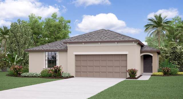 13228 Wildflower Meadow Drive, Riverview, FL 33579 (MLS #T3214409) :: Cartwright Realty