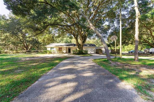 18802 Carr Drive, Lutz, FL 33559 (MLS #T3214423) :: The Robertson Real Estate Group