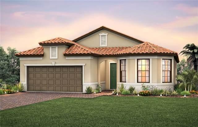 5704 Sweet Leaf Way, Sarasota, FL 34238 (MLS #T3214445) :: Medway Realty