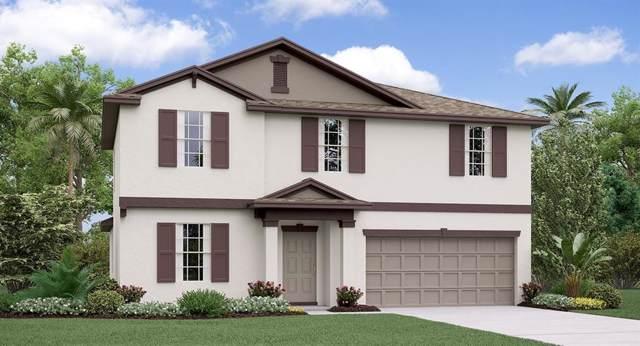 10111 Paradise Fish Drive, Riverview, FL 33578 (MLS #T3214450) :: Griffin Group