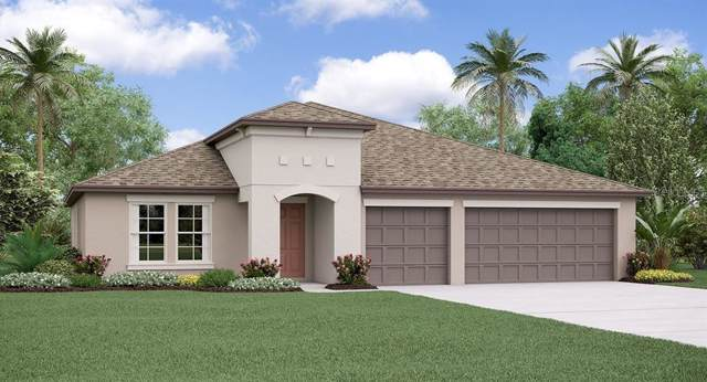 10830 Crushed Grape Drive, Riverview, FL 33578 (MLS #T3214458) :: Team Bohannon Keller Williams, Tampa Properties