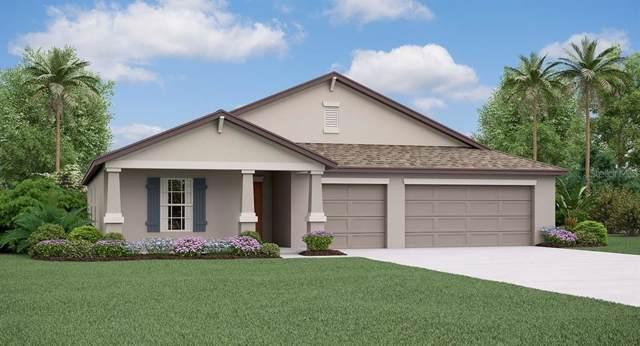 10857 Sage Canyon Drive, Riverview, FL 33578 (MLS #T3214462) :: Team Bohannon Keller Williams, Tampa Properties