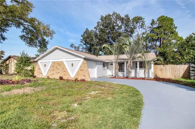 8803 Oak Circle, Tampa, FL 33615 (MLS #T3214558) :: Team Bohannon Keller Williams, Tampa Properties