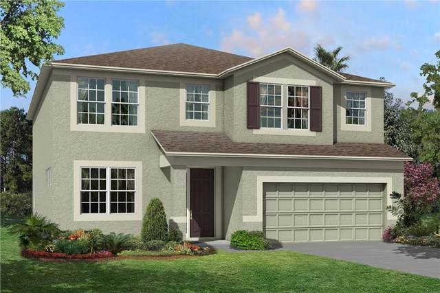 11416 Acacia Grove Lane, Riverview, FL 33579 (MLS #T3214594) :: The Duncan Duo Team