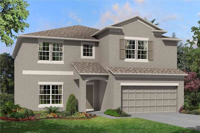 11418 Acacia Grove Lane, Riverview, FL 33579 (MLS #T3214611) :: The Duncan Duo Team