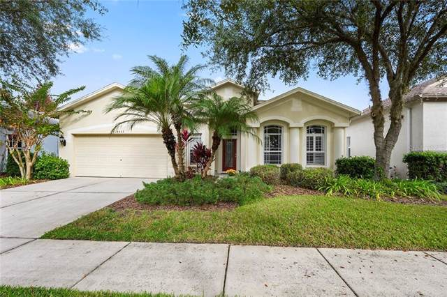 15533 Martinmeadow Drive, Lithia, FL 33547 (MLS #T3214655) :: Cartwright Realty