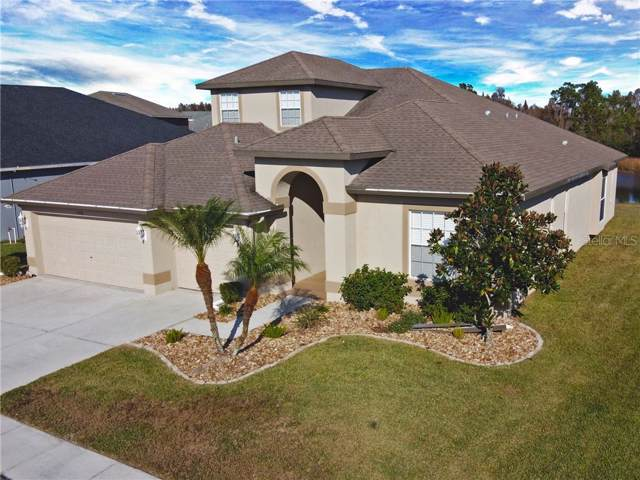 4730 Butler National Drive, Wesley Chapel, FL 33543 (MLS #T3214707) :: Zarghami Group