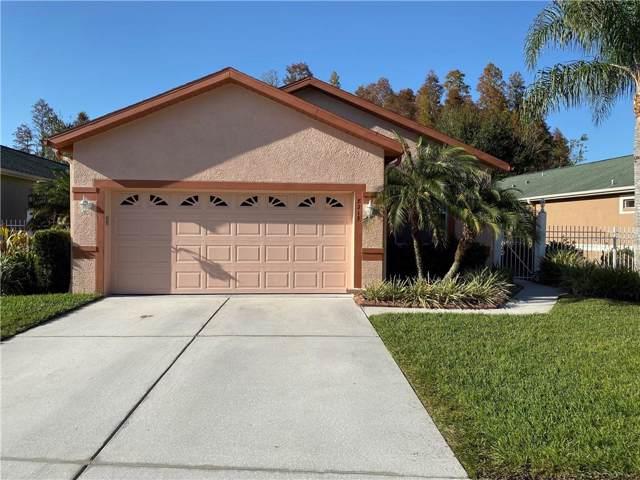 8213 Ponkan Road, Land O Lakes, FL 34637 (MLS #T3214710) :: The Price Group