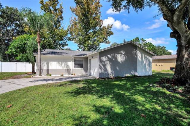 13914 Pathfinder Drive, Tampa, FL 33625 (MLS #T3214733) :: The Duncan Duo Team