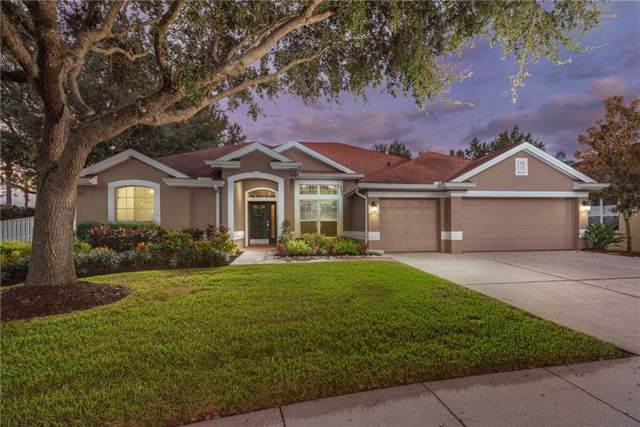 18123 Sugar Brooke Drive, Tampa, FL 33647 (MLS #T3214746) :: The Duncan Duo Team
