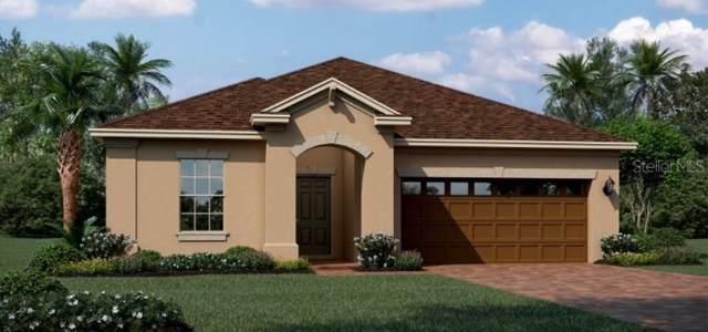 892 Carmillion Court, Groveland, FL 34736 (MLS #T3214795) :: Team Bohannon Keller Williams, Tampa Properties