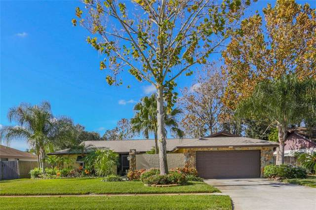 2006 Sycamore Lane, Plant City, FL 33563 (MLS #T3214802) :: The Duncan Duo Team