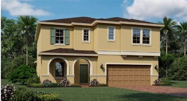 884 Carmillion Court, Groveland, FL 34736 (MLS #T3214821) :: Team Bohannon Keller Williams, Tampa Properties