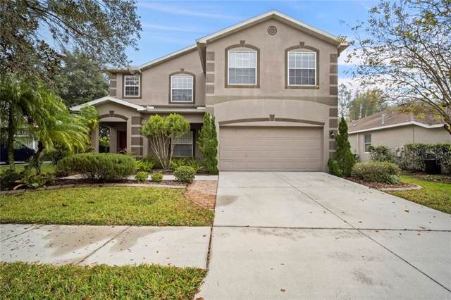 6006 Palomaglade Drive, Lithia, FL 33547 (MLS #T3214825) :: Cartwright Realty