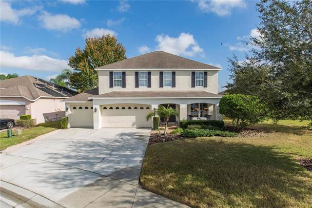1902 Terralyn Lane, Trinity, FL 34655 (MLS #T3214829) :: Griffin Group