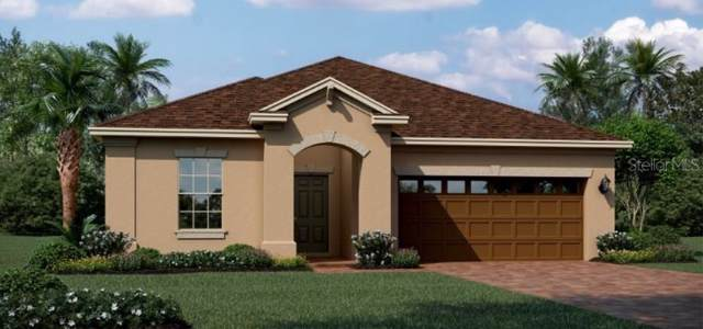 876 Carmillion Court, Groveland, FL 34736 (MLS #T3214833) :: Lovitch Realty Group, LLC