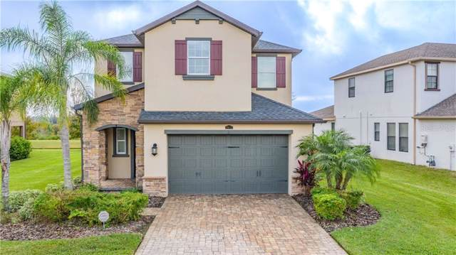 29112 Perilli Place, Wesley Chapel, FL 33543 (MLS #T3214863) :: Zarghami Group