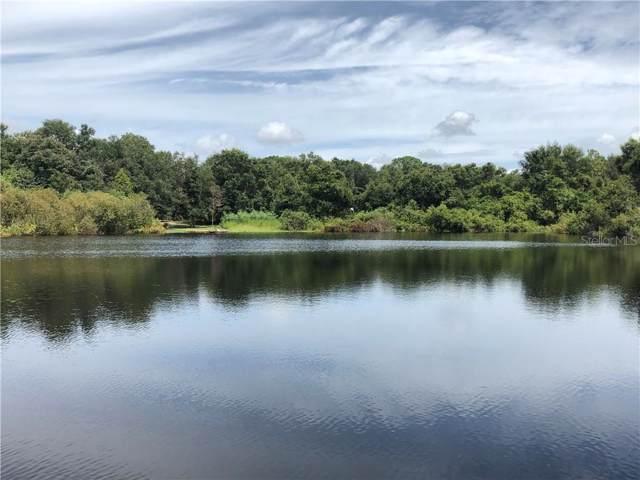 5117 S Shoreline Drive, Floral City, FL 34436 (MLS #T3214868) :: Premium Properties Real Estate Services