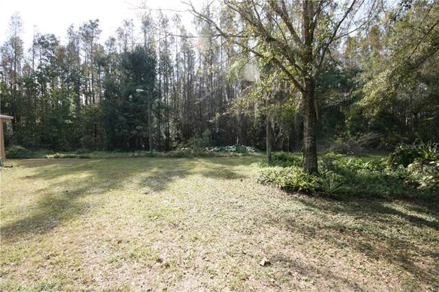23718 Terrell Lane, Land O Lakes, FL 34639 (MLS #T3214932) :: The Duncan Duo Team