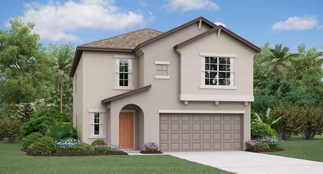 10460 Carloway Hills Drive, Wimauma, FL 33598 (MLS #T3214939) :: Cartwright Realty