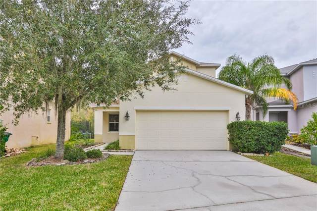 3635 Peppervine Place, Wesley Chapel, FL 33544 (MLS #T3215026) :: Zarghami Group