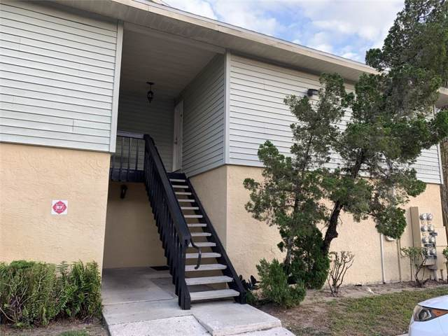 233 Red Maple Place #233, Brandon, FL 33510 (MLS #T3215101) :: Team Bohannon Keller Williams, Tampa Properties