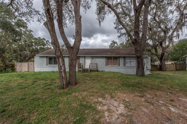 300 Larson Avenue, Brandon, FL 33510 (MLS #T3215115) :: Griffin Group