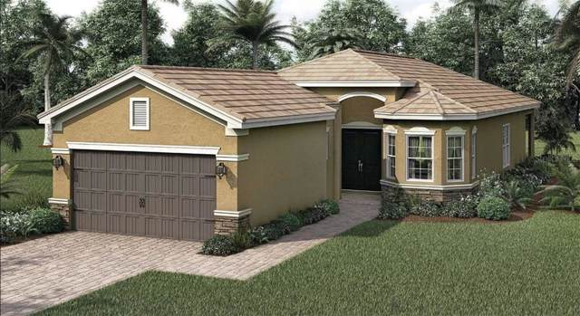 30972 Lindentree Drive, Wesley Chapel, FL 33543 (MLS #T3215178) :: Team Bohannon Keller Williams, Tampa Properties