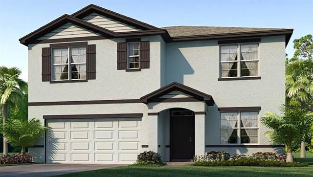 2716 Garden Plum Place, Odessa, FL 33556 (MLS #T3215181) :: Team Bohannon Keller Williams, Tampa Properties