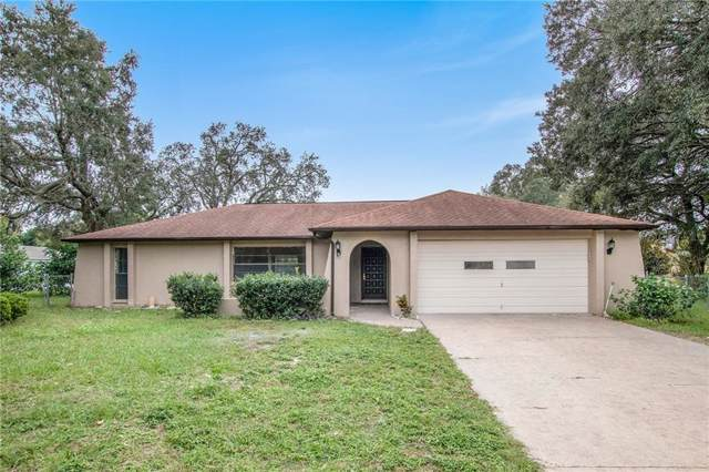 8276 Pebble Street, Spring Hill, FL 34608 (MLS #T3215257) :: Griffin Group