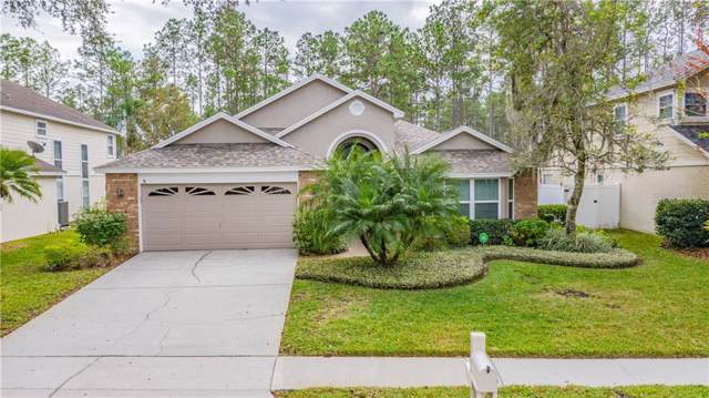 9037 Quail Creek Drive, Tampa, FL 33647 (MLS #T3215261) :: 54 Realty