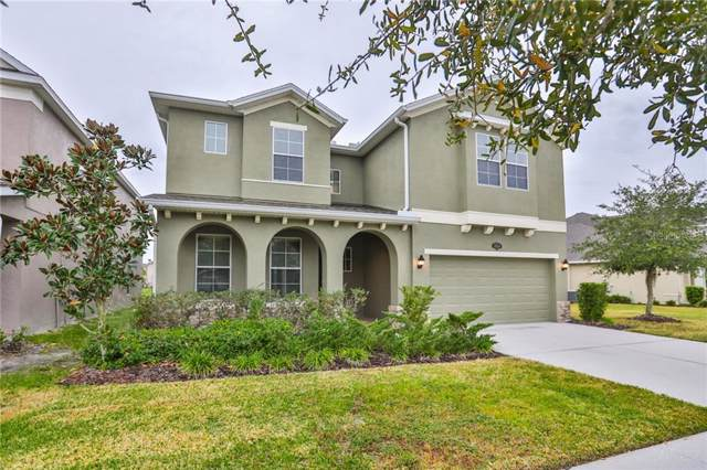 19310 Water Maple Drive, Tampa, FL 33647 (MLS #T3215287) :: The Duncan Duo Team