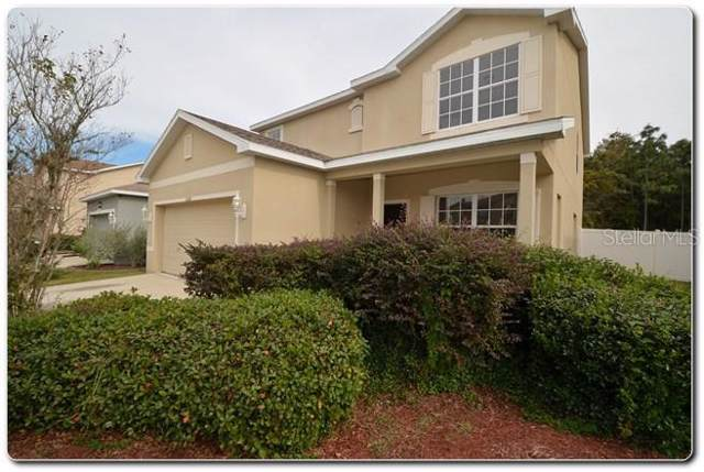 11168 Creek Haven Drive, Riverview, FL 33569 (MLS #T3215298) :: The Duncan Duo Team
