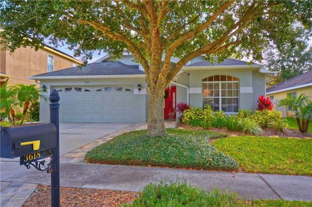 3618 Olde Lanark Drive, Land O Lakes, FL 34638 (MLS #T3215318) :: Griffin Group