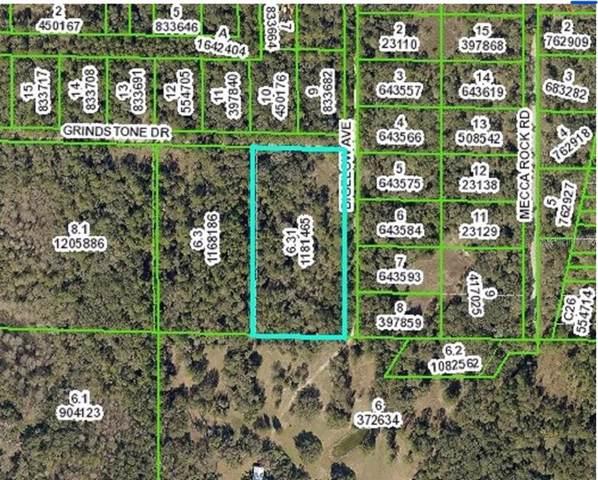 0 Grindstone, Webster, FL 33597 (MLS #T3215395) :: Cartwright Realty