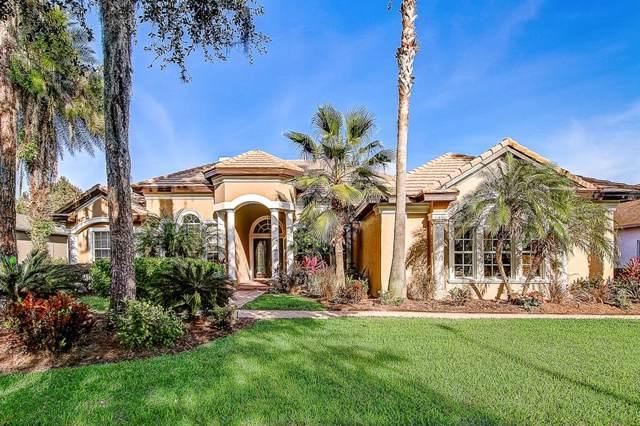 3202 Sunset Lakes Boulevard, Land O Lakes, FL 34638 (MLS #T3215421) :: GO Realty