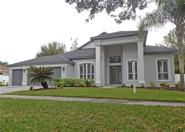 5802 Tanagerside Road, Lithia, FL 33547 (MLS #T3215471) :: GO Realty