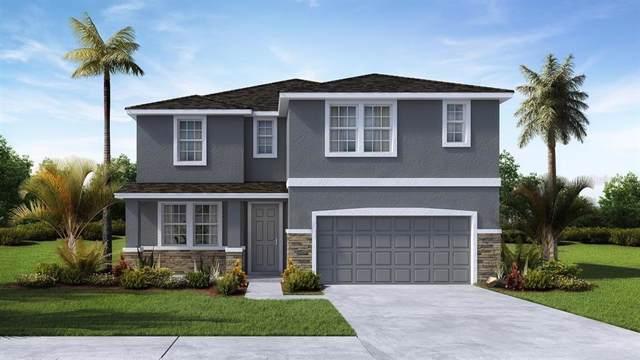 32923 Sand Creek Drive, Wesley Chapel, FL 33543 (MLS #T3215625) :: The Light Team