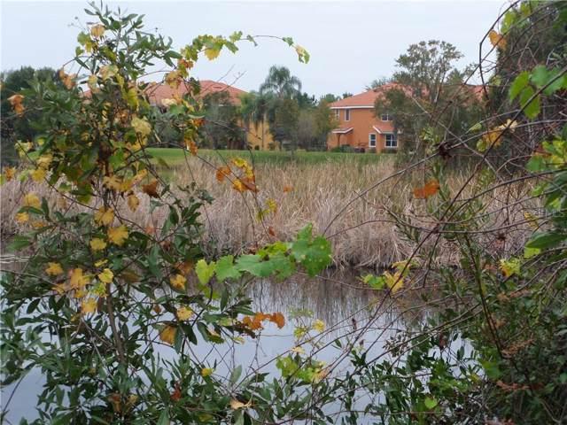 6820 Sombras Way #26, Land O Lakes, FL 34637 (MLS #T3215632) :: Armel Real Estate