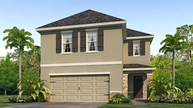 5850 Calla Lilly Drive, Sarasota, FL 34232 (MLS #T3215897) :: Armel Real Estate